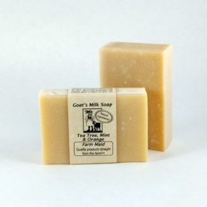 Tea Tree Mint & Orange Goat's Milk Soap